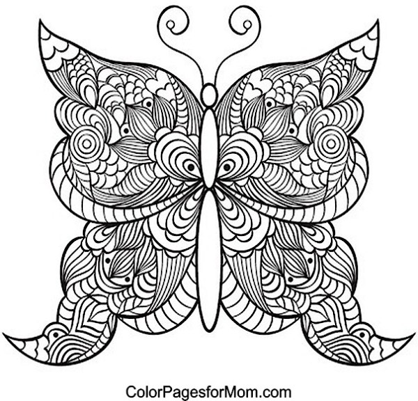 butterfly coloring pages for adults # 26