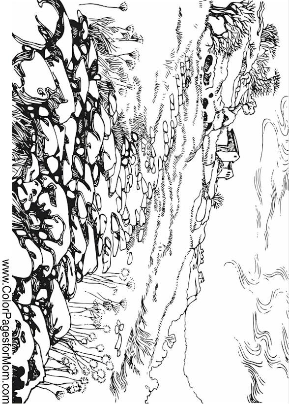 Landscape Coloring Page 39