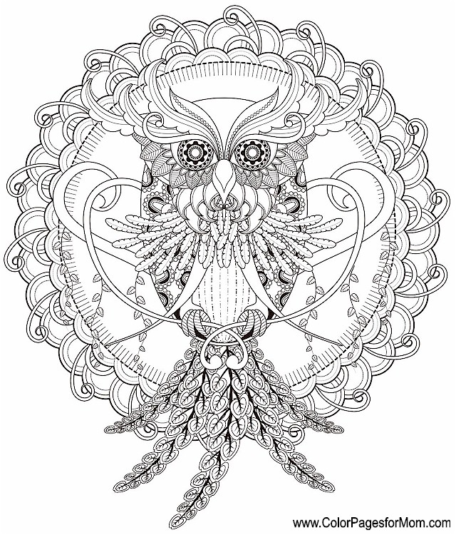 Whimsical Coloring Page 61