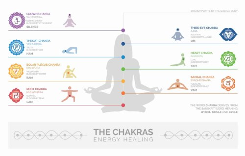small resolution of diagram of chakra