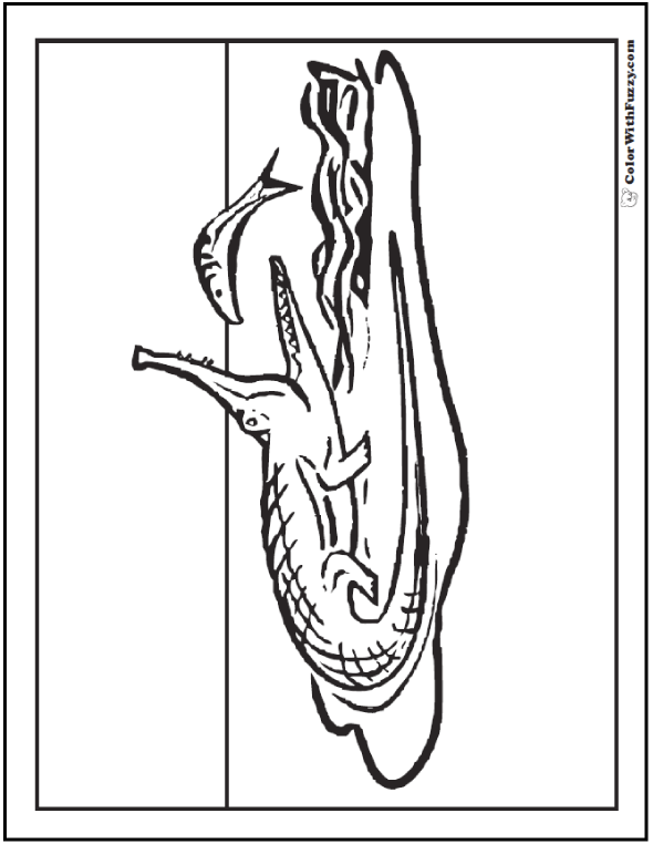 Alligator Coloring Pages: Print And Customize