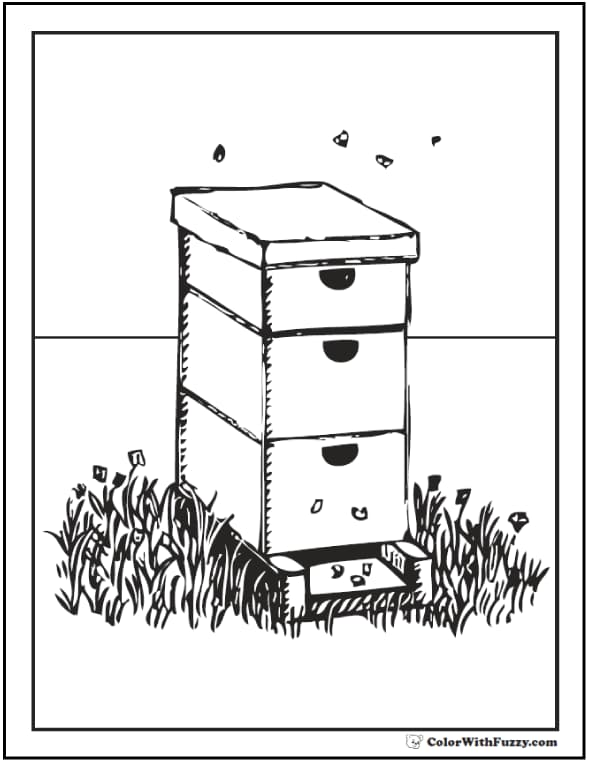 Bee Coloring Pages: Hives, Flowers, And Honey