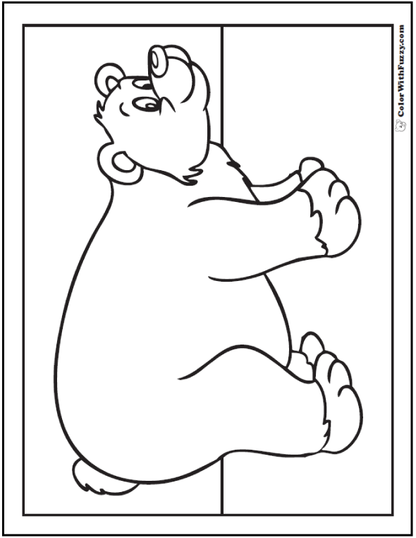 Bear Coloring Pages: Grizzlies, Koalas, Pandas, Polar, and