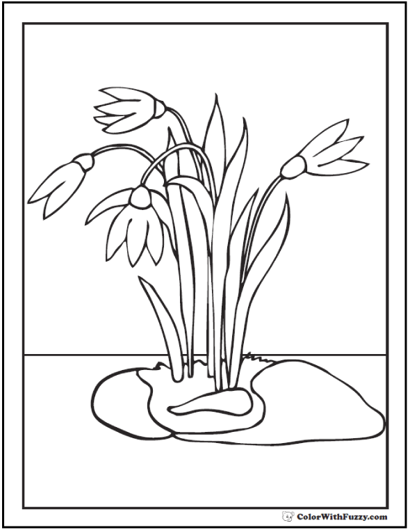 Spring flowers Coloring Page 28+ Spring Coloring Pages