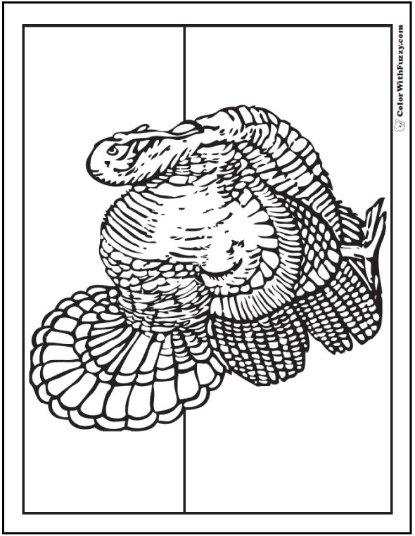 30+ Turkey Coloring Pages: Interactive PDFs