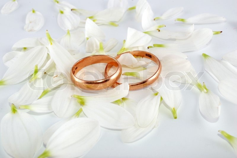 Wedding rings and flowers composition   Stock Photo