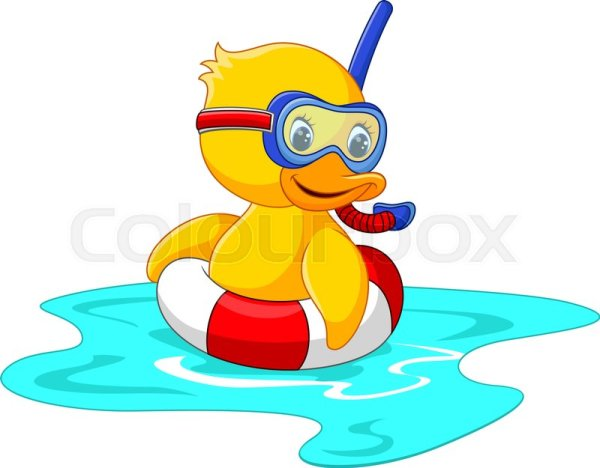 duck diver with swimming belt sitting
