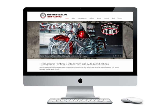 Immersion Imaging website by Colour Cult Brisbane
