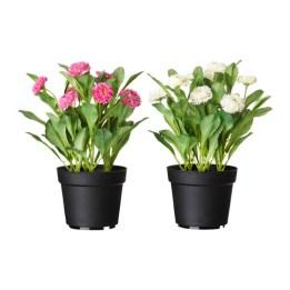 ikea-artificial-plants-2