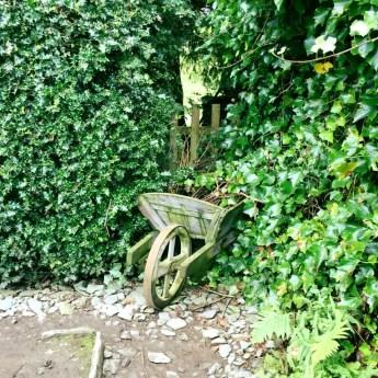 Hill Top Garden 4