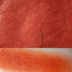 Colourpop CUTEOLOGIST Super Shock Shadow Swatch and Photo