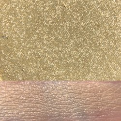 GIMME BUTTERFLIES Palette Swatches