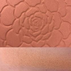 TERRAN UP MY HEART - Colourpop Garden Variety blush