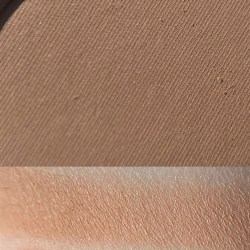 VEGABOND - Colourpop Wild Nothing Palette
