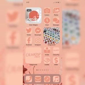 Colourpop Coast to Coral iPhone iOS 14 customized home screen