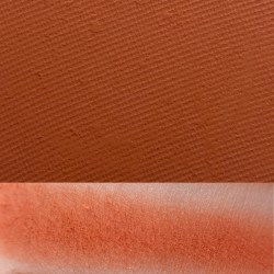 Coast to Coral palette - Angelfish