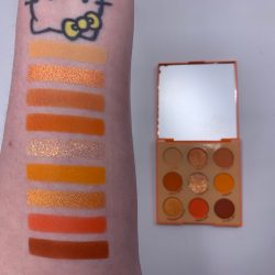 Colourpop ORANGE YOU GLAD? palette and swatches
