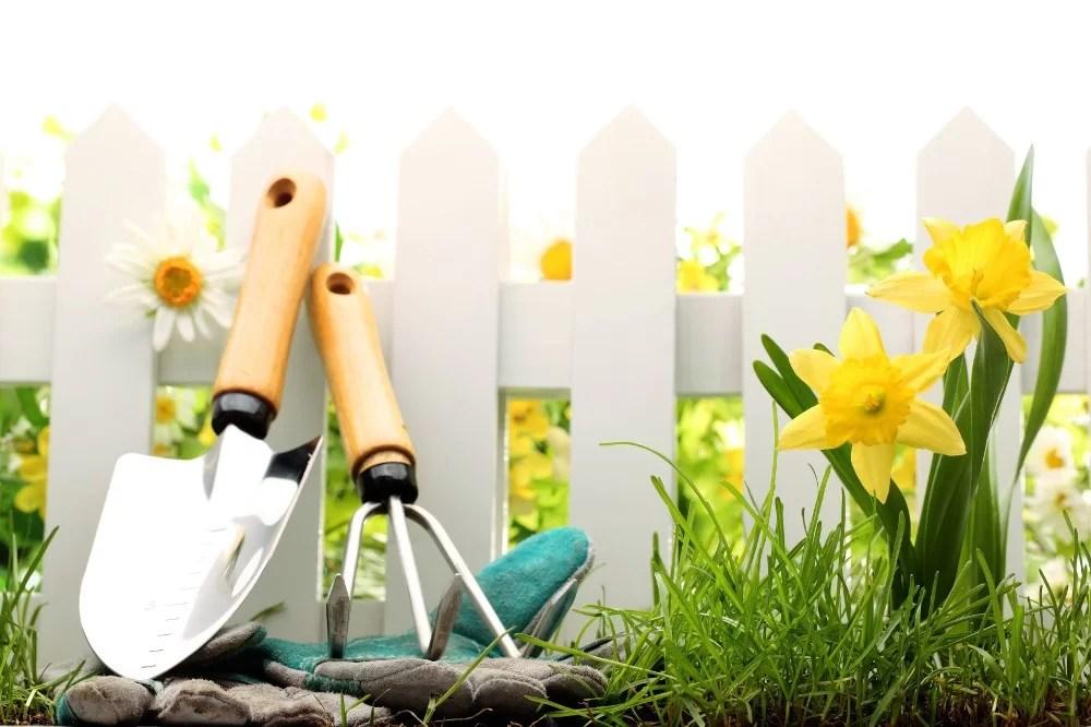 Giardinaggio quali sono gli attrezzi necessari