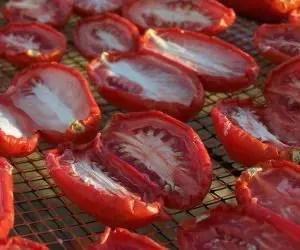 Pomodori secchi - pomodori secchi su rete in plastica dura
