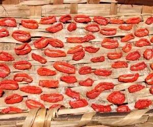 Pomodori secchi - pomodori in essicazione dopo salatura