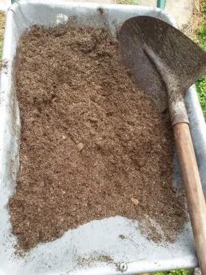 La coltivazione dell'aloe vera e dell'aloe arborescens-mix terreno