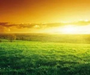 Il ciclo dell'acqua e la progettazione dell'orto in permacultura - margini