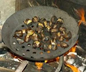 castagne al forno-caldarroste sul fuoco