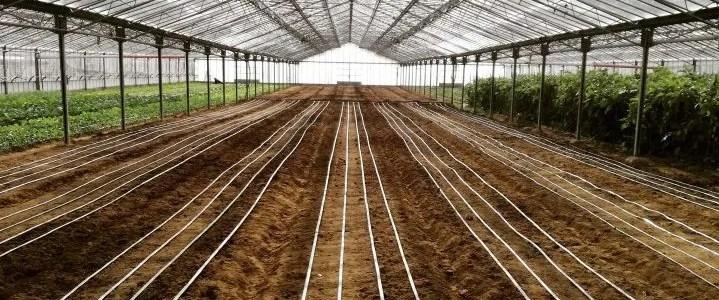 Manichetta per irrigazione dell orto