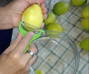 Pelare il limone per la preparazione del limoncello fai da te