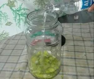 limoni in infusione in alcol da cucina