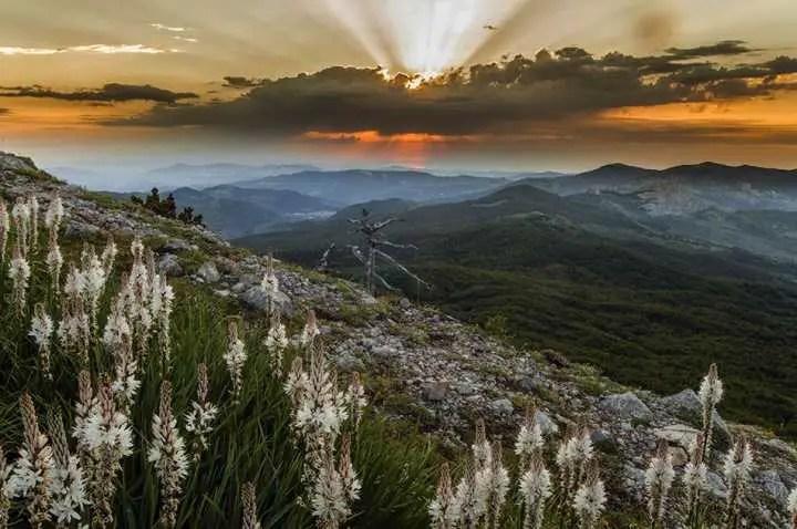 Alba sullo Ionio - Selletta della Porticelle (Parco Nazionale del Pollino)