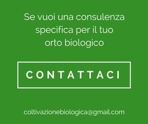 Banner coltivazione biologica
