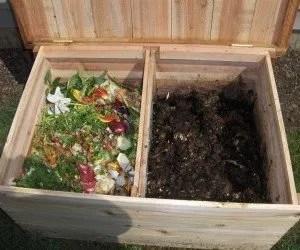 La lombricoltura il compostaggio domestico e lombrichi