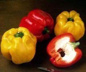 Peperoni biologici quadrato d'Asti