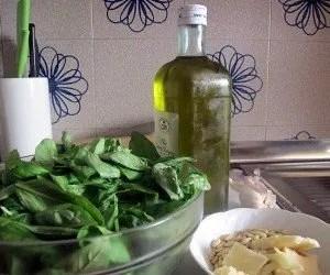 Ingredienti del pesto di basilico