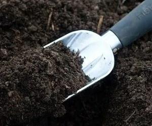 Tipi di terreno agricolo