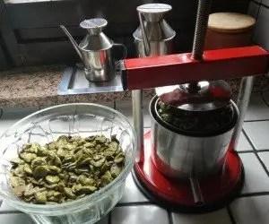 Torchiatura delle olive schiacciate