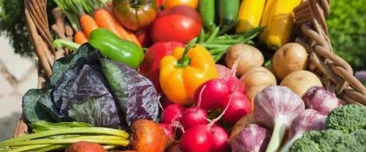 Come coltivare ortaggi in maniera biologica