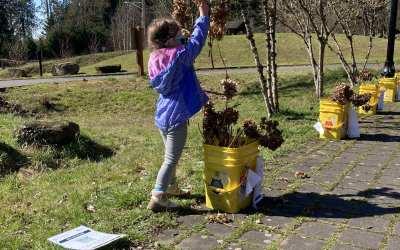 Community Blooms at Columbia Springs