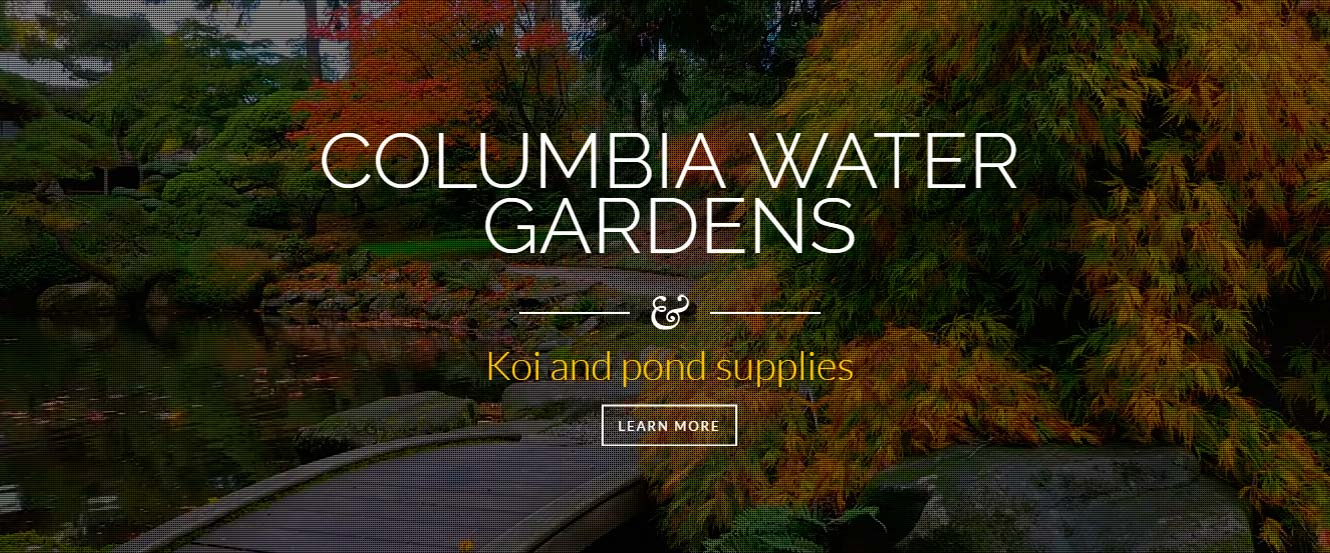 Koi Pond Supplies Columbia Sc