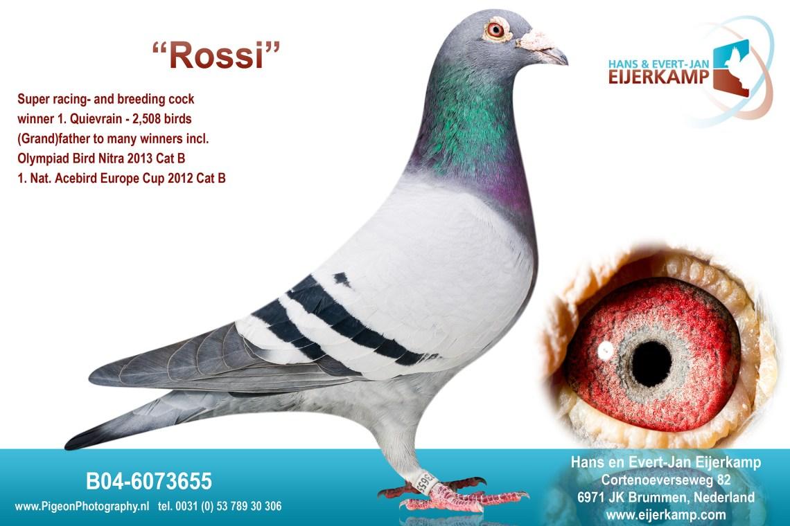 B04-6073655-Rossi