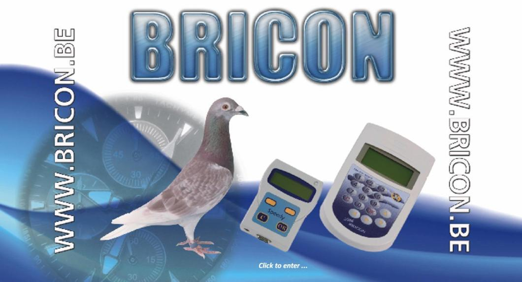bricon