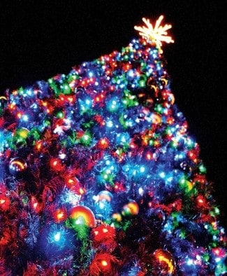 Tree Lightings and Holiday Celebrations