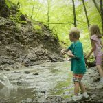 Free Summer Hikes and Events at Preservation Parks in Delaware