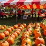 Register for the Upper Arlington Fall Fun at Fancyburg