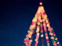 kings island winterfest christmas tree kings island winterfest