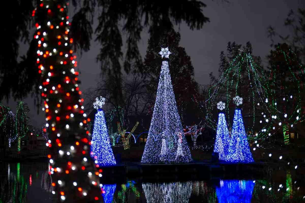 Zoo Lights Columbus Price