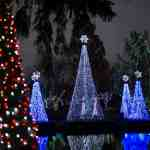 Wildlights at the Columbus Zoo and Aquarium