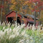 Field trips and fall fun day trips to Fairfield County