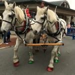 Christmas Parades in Columbus